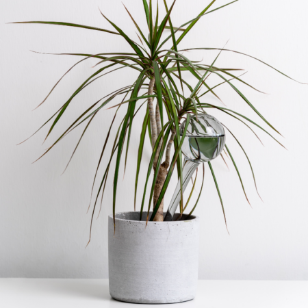 GREENERY taimede niisutuspall HALL 28 cm